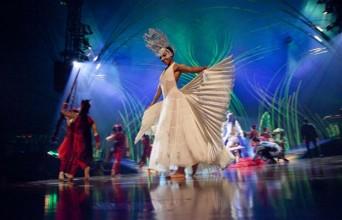 Scene from Cirque Du Soleil's Amaluna
