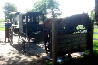 Amish and gay