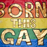 Rainbow flag with Born This Gay printed on it