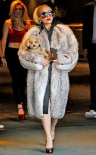 Lady Gaga in fur coat