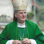 Minnesota Archbishop Nienstedt