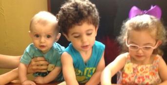 donor siblings