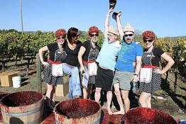 Big Gay Grape Stomp
