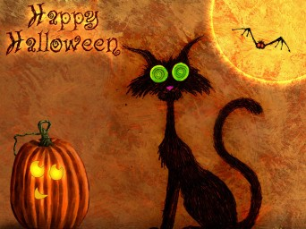 Halloween image with black cat and pumpkin